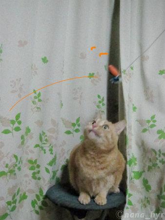 2011-11-16-01.jpg