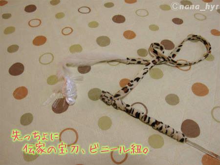 2011-11-19-01.jpg