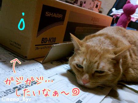 2012-01-13-03.jpg