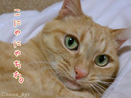2012-01-15-01.jpg