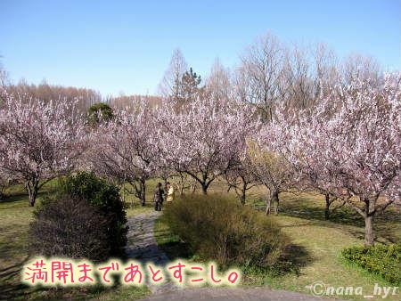 2012-03-22-05.jpg