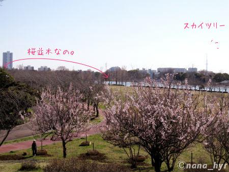 2012-03-22-07.jpg