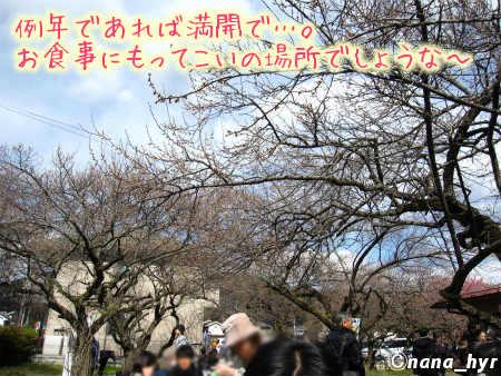 2012-03-27-19.jpg