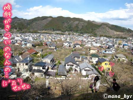 2012-03-28-03.jpg