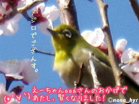 2012-03-28-07.jpg