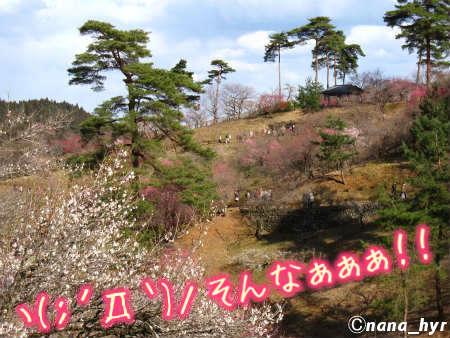 2012-03-28-10.jpg