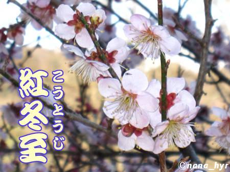 2012-03-29-05.jpg