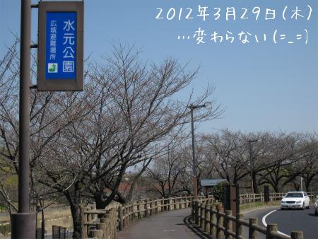 2012-03-30-03.jpg