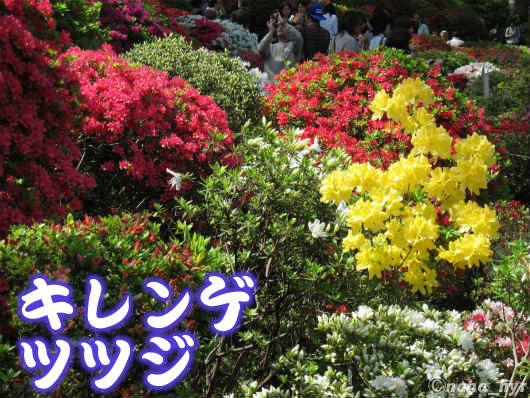 2012-05-09-08.jpg