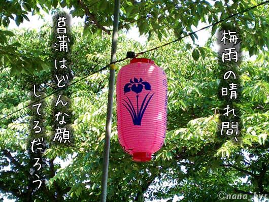 2012-06-15-03.jpg