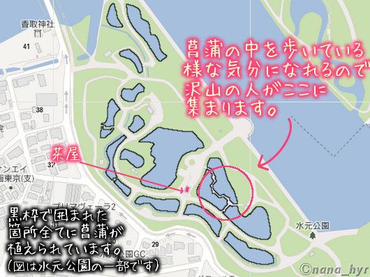2012-06-15-05.jpg