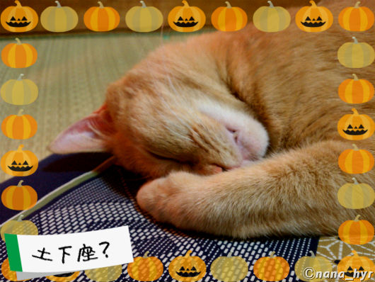 2012-10-31-01.jpg