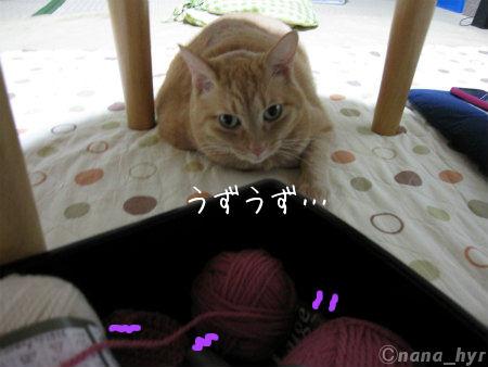2011-11-23-07_1-7.jpg