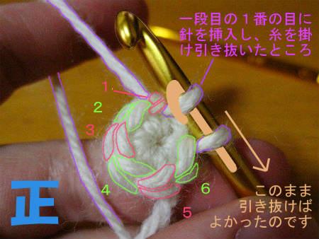 2011-11-23-10_2-3.jpg