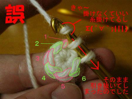 2011-11-23-11_2-4.jpg