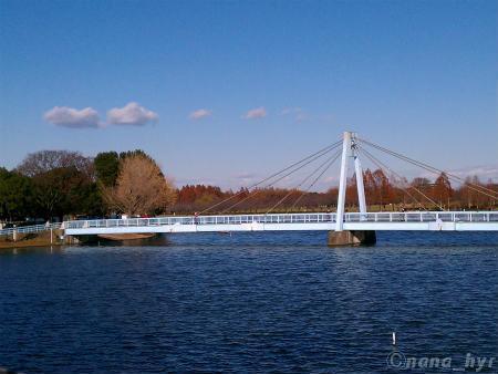 2011-12-20-02.jpg