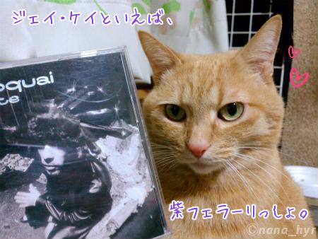 2012-01-16-01.jpg