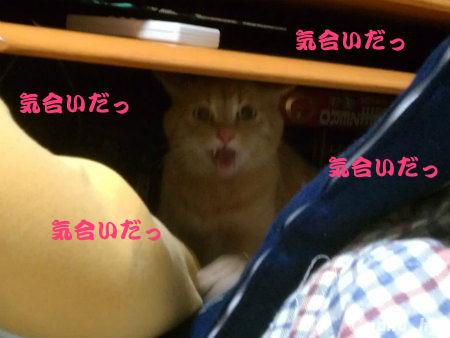 2012-01-24-05.jpg