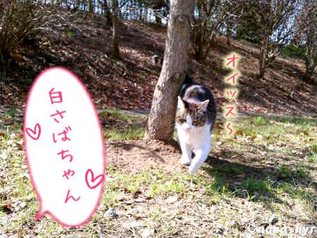 2012-03-20-02.jpg