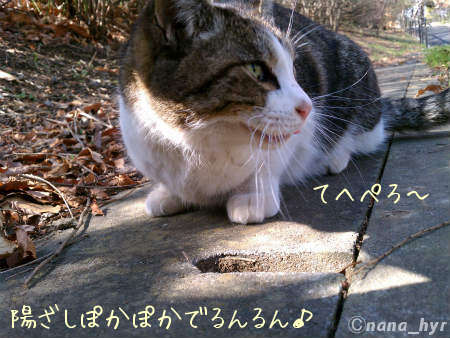 2012-03-20-06.jpg