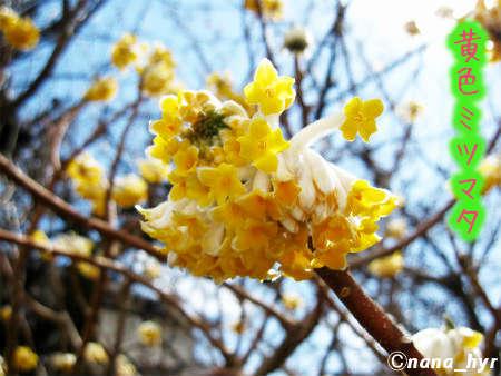 2012-03-27-09.jpg
