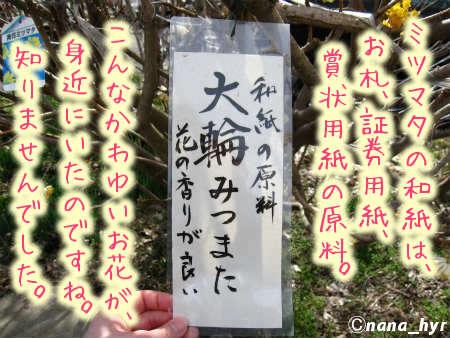 2012-03-27-11.jpg