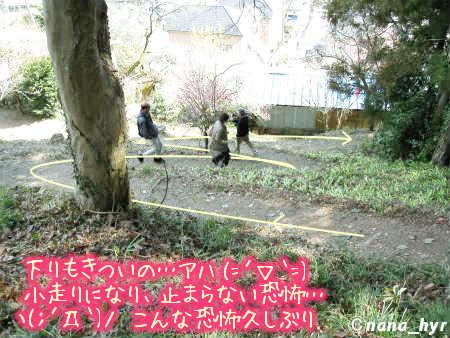 2012-03-28-04.jpg