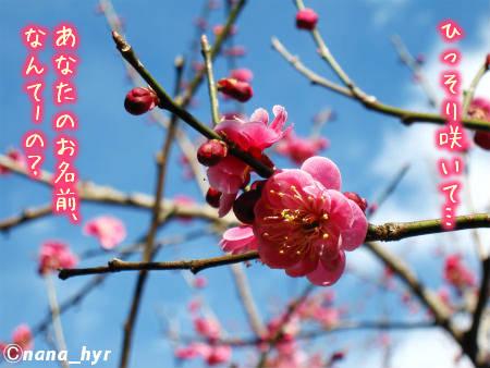 2012-03-28-06.jpg
