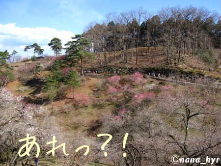 2012-03-28-09.jpg