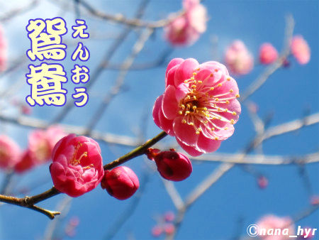 2012-03-28-12.jpg