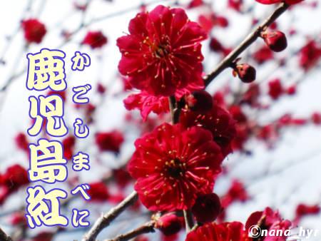 2012-03-29-08.jpg