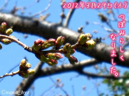 2012-03-30-07.jpg