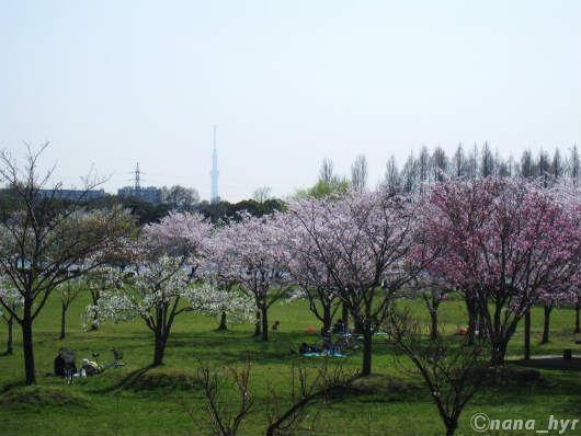 2012-04-17-09.jpg