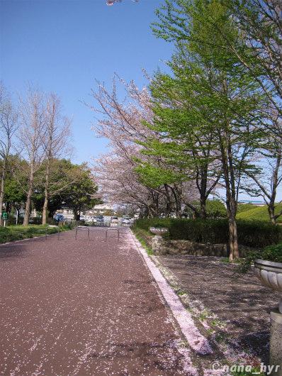 2012-04-18-07.jpg