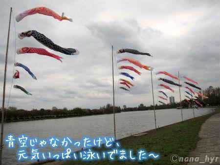 2012-04-23-05.jpg