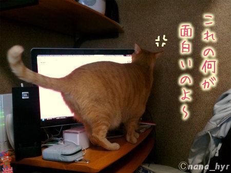 2012-04-25-01.jpg