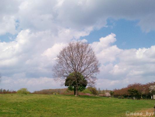 2012-04-25-08.jpg