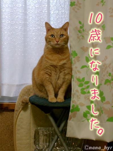 2012-04-27-01.jpg