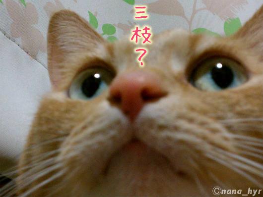 2012-05-11-extra-01.jpg